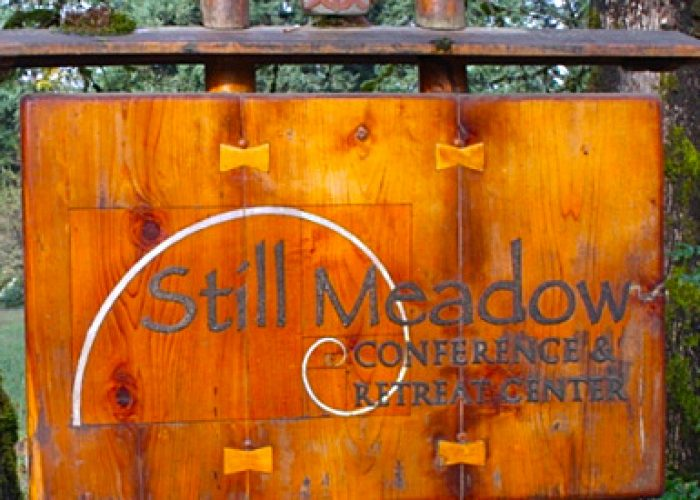 still-meadow-featured